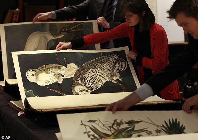 john james audubon 2 Самая дорогая в мире книга была продана за 11.4 млн. долларов
