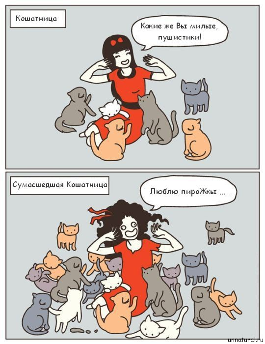 hilarious comics with 640 high 06 Кошкокомиксы