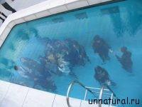 Leandro Erlich illusion pool m Иллюзорный бассейн Леандро Ирлича