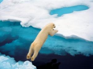 global warming 300x222 Арктический лед растает к 2019 году