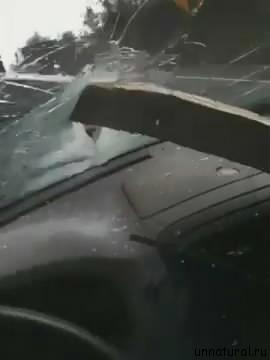 plank through my windshield 2 За секунду до: женщина чудом осталась жива, после того, как в салон ее автомобиля, пробив лобовое стекло, влетела деревянная доска