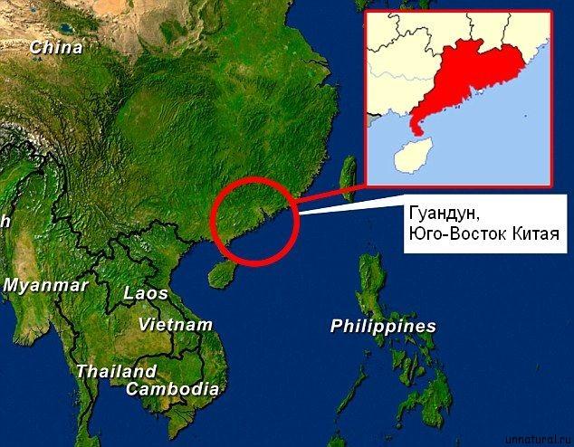 China Cthulhu 2 К берегу одного из китайских городов прибило бездыханное тело морского чудовища