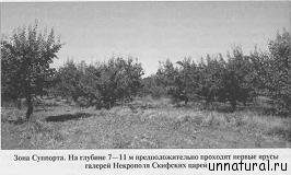 080911 0859 8 Юрий Марчук – Проникновение. Часть 2