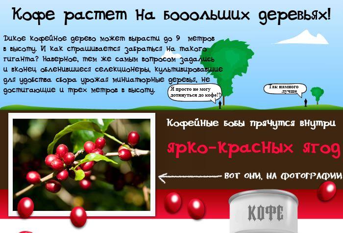 coffee 4 14 вещей, которые Вам необходимо знать о кофе