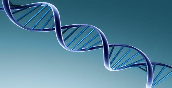 11 Биоинформационные ритмы общества и цивилизации. Часть VII