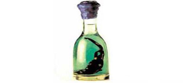 Salamander Brandy 13 самых необычных в мире способов словит кайф