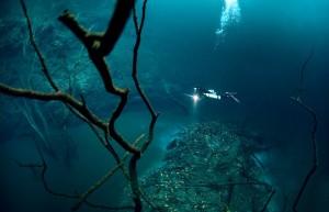 underwater wonders 10 1 300x193 Топ 10. Самые удивительные и невероятные вещи, которые можно найти под водой