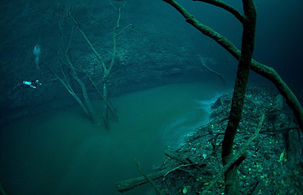 underwater wonders 10 2 Топ 10. Самые удивительные и невероятные вещи, которые можно найти под водой