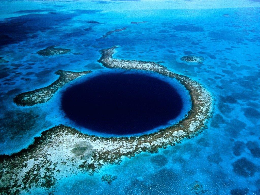 underwater wonders 9 Топ 10. Самые удивительные и невероятные вещи, которые можно найти под водой