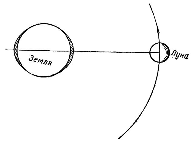 Схема приливов на Земле.