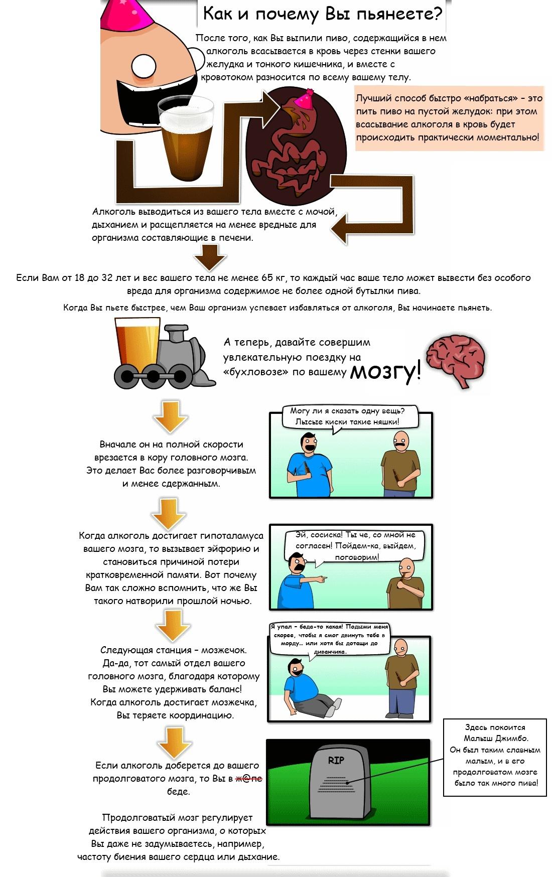 un 7 10 вещей, которые Вы должны знать о пиве