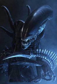 alien В Мексике был обнаружен череп «инопланетянина», возраст которого насчитывает 1 000 лет