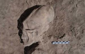 human alien 1 300x189 В Мексике был обнаружен череп «инопланетянина», возраст которого насчитывает 1 000 лет