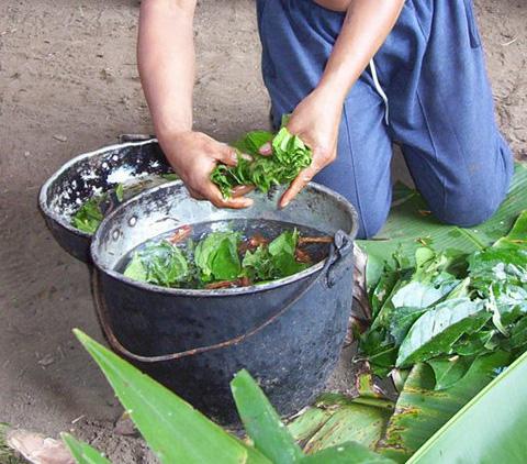 Aya preparation Топ 9. Самые опасные напитки в мире