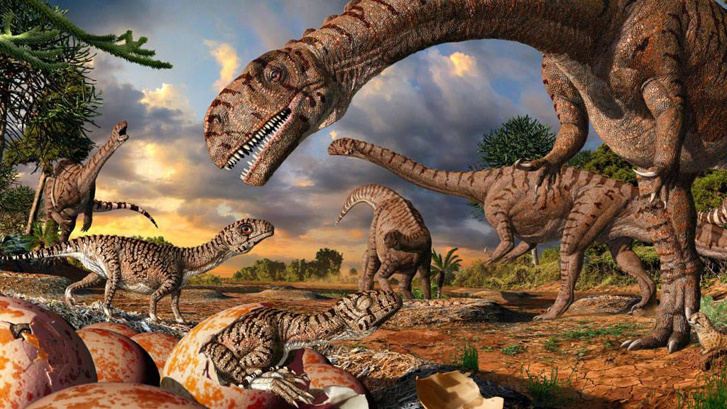 d11 Тайна, покрытая камнем: загадки палеонтологии