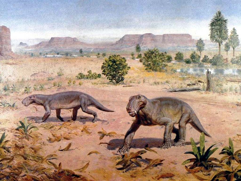 d21 Тайна, покрытая камнем: загадки палеонтологии