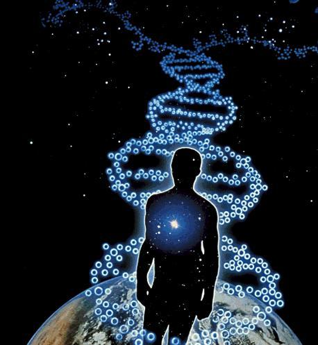 5 Звёзды и гены