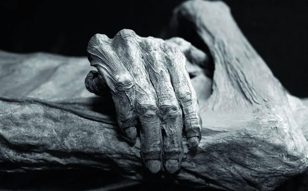 j1 Смерть   это только начало | Удивительные мумии нового времени