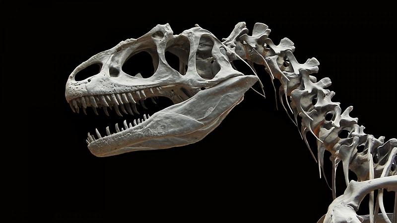 3 Кровь динозавров
