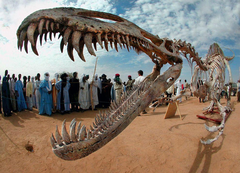 4 Кровь динозавров