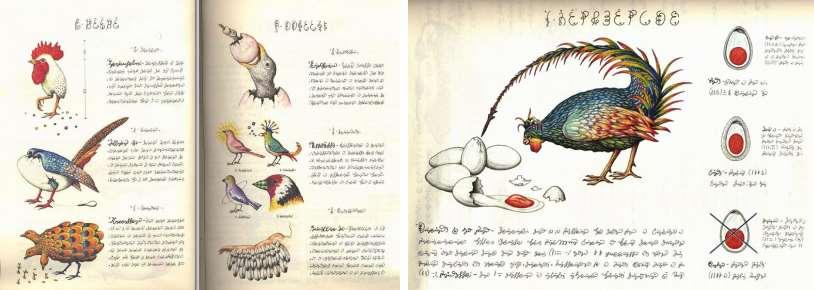 j8 Самые загадочные нерасшифрованные рукописи